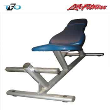 Life Fitness Abdominal Board