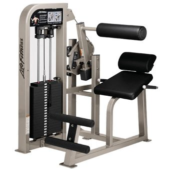 Life Fitness pro 2 Back ext